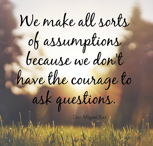 please-no-assumptions-300x287.png